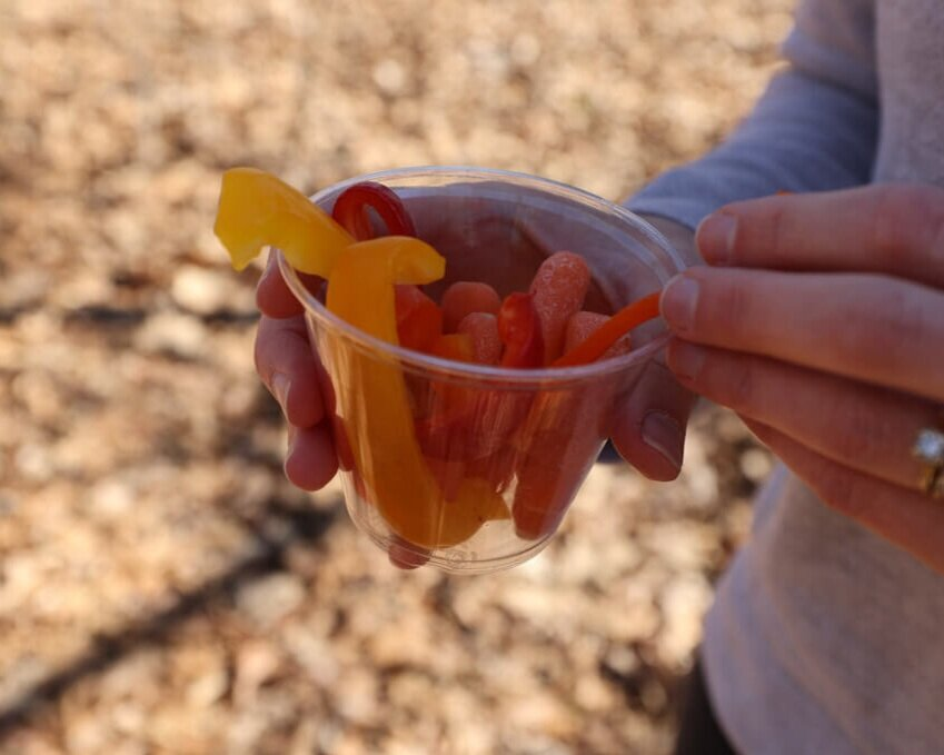 sliced veggies as a healthy make ahead camping snack